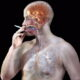 Закачка в мозг 73 тысячи доз никотина в год