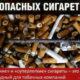 Легкие сигареты — это обман