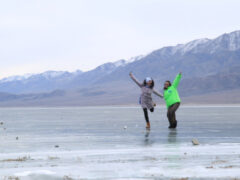 На азиатское сафари – через кыргызский Байкал