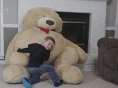 Оживший плюшевый медведь напугал мальчика