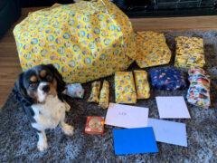 Счастливый пёс прекрасно отпраздновал свой первый день рождения