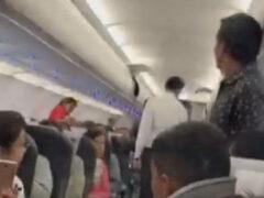 Голубю не разрешили бесплатно лететь на самолёте
