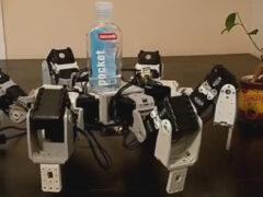 Робот любезно напоминает людям о важности мытья рук