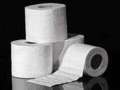 Детишки уничтожили запас туалетной бумаги, купленный матерью