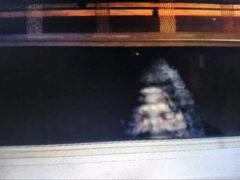 Очевидец, сфотографировавший бигфута, наконец опубликовал снимки