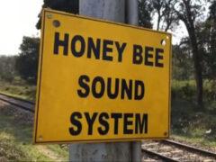 Чтобы слоны не попадали под поезд, их пугают пчелиным жужжанием