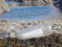 Бутылка с посланием плавала по морю 19 лет