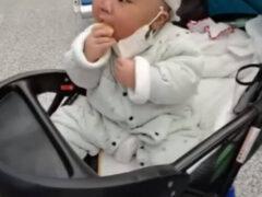 Малыш не забывает о важности маски, даже лакомясь печеньем