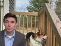 Рассказывая о погоде, журналист получил милую помощь от своей собаки