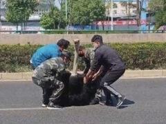 Чтобы справиться со сбежавшим страусом, потребовалось несколько человек