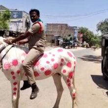 Разрисованная полицейская лошадь многим не понравилась