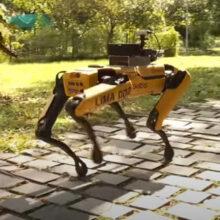 Робот-собака гуляет по парку, напоминая горожанам о том, как важно соблюдать карантин